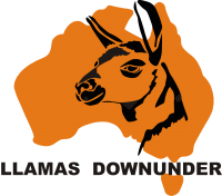 Llamas Downunder